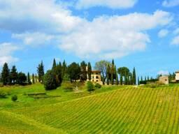 Агенство услуг для владельцев недвижимости в Италии - фото 1