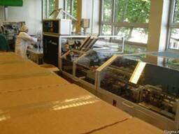 Оборудование упаковки и фасовки фармацевтических препаратов - фото 2