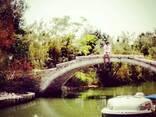 Острова Венецианской Лагуны: Мурано, Бурано, Торчелло - photo 5