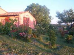 Вилла с виноградником в Тоскане - фото 8