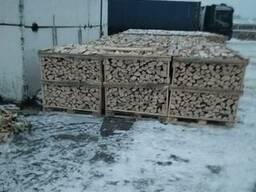 All'ingrosso di legna da ardere di Faggio, Quercia. Дрова - фото 7