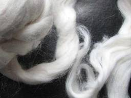 Cotton fiber and cotton lint from Turkmenistan
