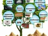 Farina di legno, faggio, pasta / polpa, patatine da fumo - фото 1