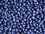 Frozen blackberry - photo 1