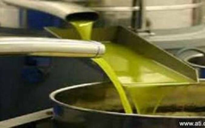 Оливковое масло для производства прод. , косметич. , тех. прод