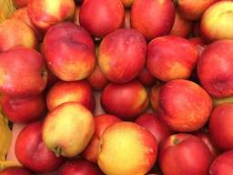 Sweet and juicy Peach, Nectarine and Cherry time.